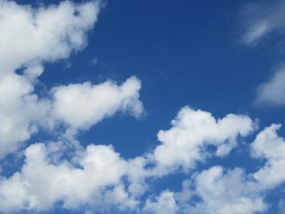 今日の青い空