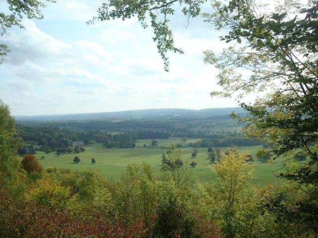 Titsey walk上からの景色