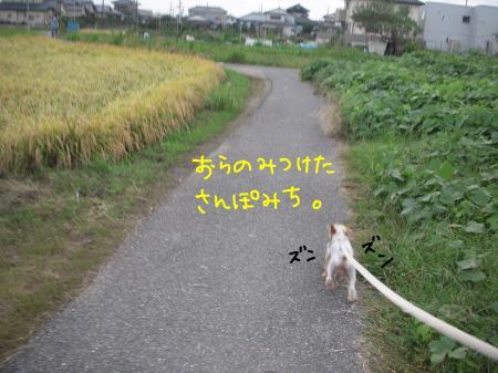 DSCN1439_convert_20111009231339.jpg