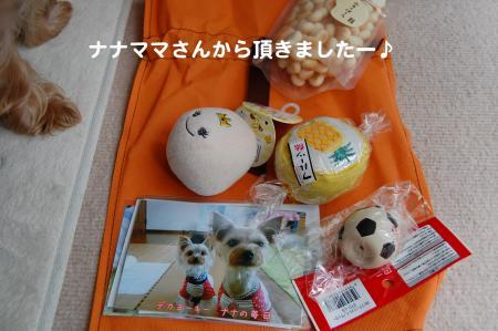DSC_0010_convert_20111018234909.jpg