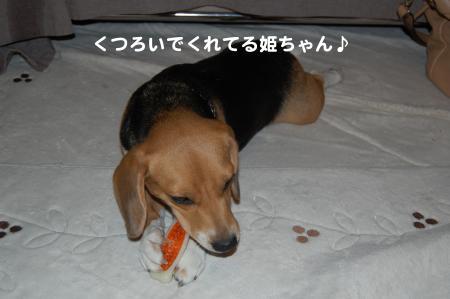 DSC_0011_convert_20111024192824.jpg