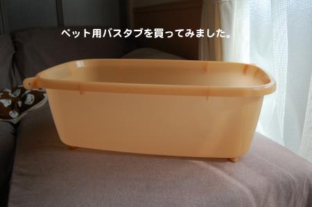 DSC_0011_convert_20111112082658.jpg