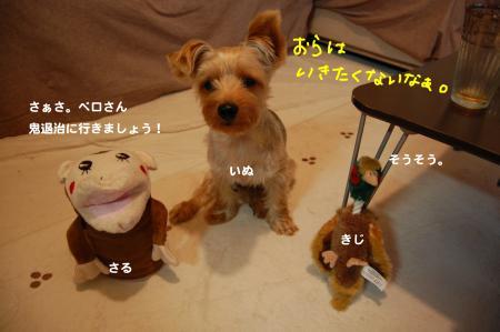 DSC_0015_convert_20111113205340.jpg
