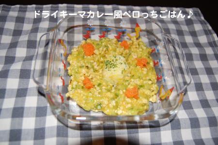 DSC_0033_convert_20111027120037.jpg