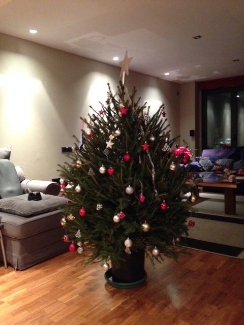 クリスマスツリー 家