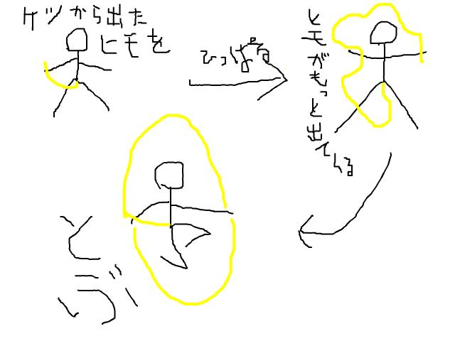 snap_pfpkm_2012322103.jpg