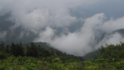 剣山山頂から景色
