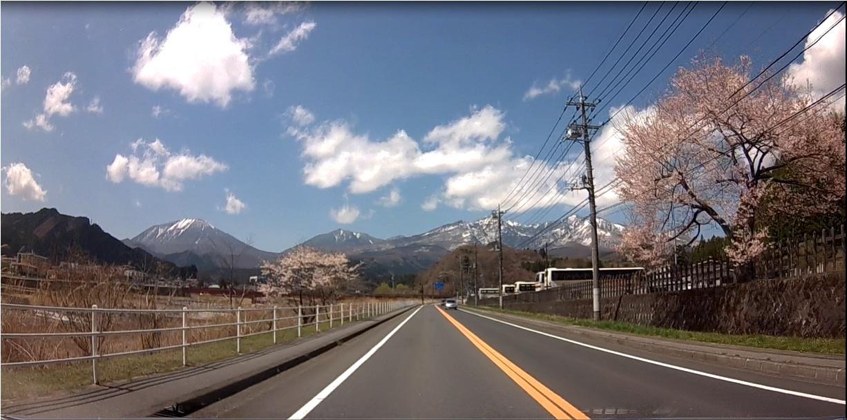 日光連山と桜