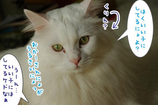 04_20111003175353.jpg
