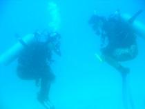 タオ島 ダイビング DMTトレーニング