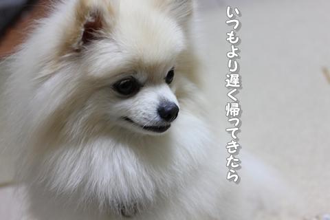 20130131-IMG_5595.jpg