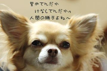 IMG_3459.jpg