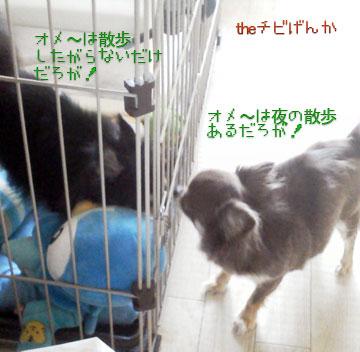 NEC_0001_20130610150648.jpg