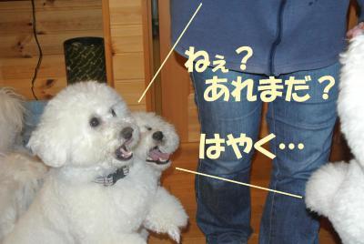 083_convert_20130131151529.jpg