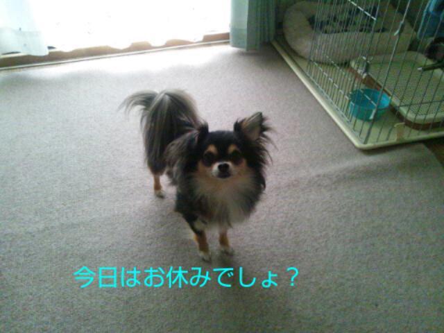 20130511_104713.jpg