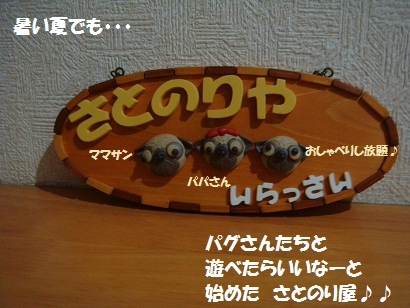 DSC00909_20110913012035.jpg