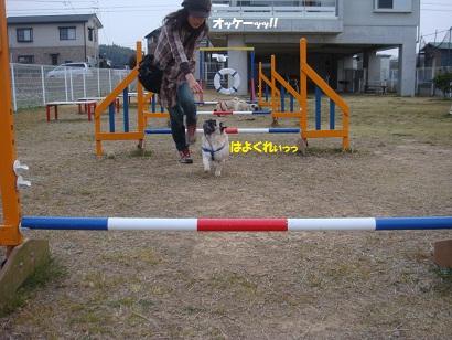 DSC03750_20110913202241.jpg
