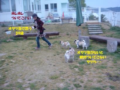 DSC03936_20110922044536.jpg