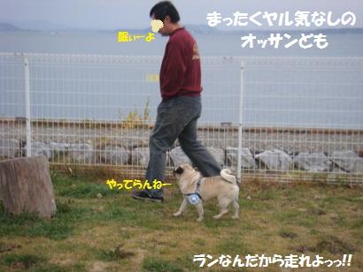DSC03943_20110922043517.jpg