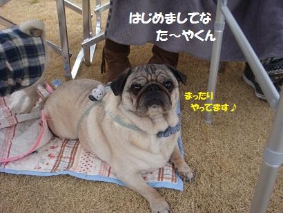 DSC04004_20110929004857.jpg