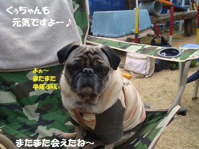 DSC04109_20111003041045.jpg