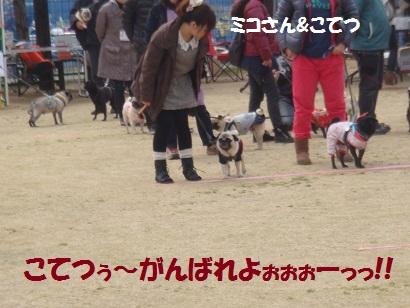 DSC04158_20111005001712.jpg