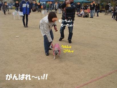 DSC04212_20111005004036.jpg