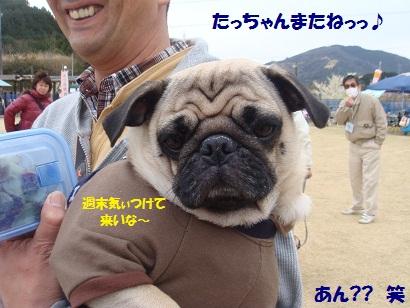 DSC04255_20111005022111.jpg