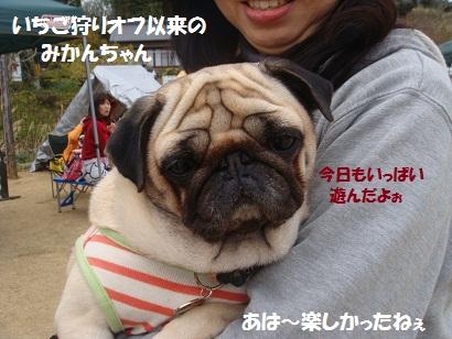 DSC04277_20111003031159.jpg