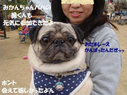 DSC04281_20111003031159.jpg