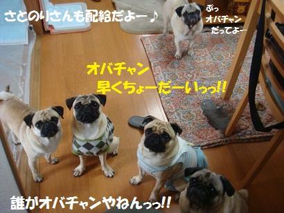 DSC04420_20111017033719.jpg