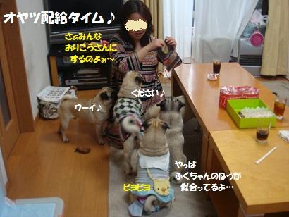 DSC04435_20111017033719.jpg