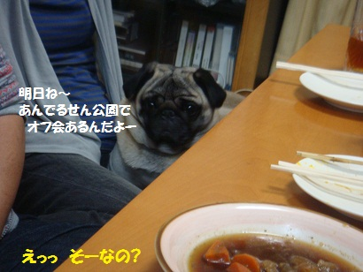 DSC04471_20111019204927.jpg