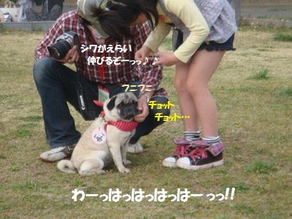 DSC04601_20111018193637.jpg