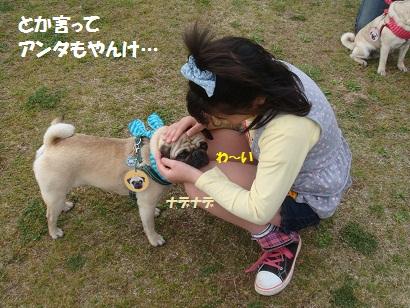 DSC04607_20111019202226.jpg