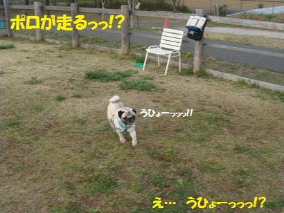 DSC04646.jpg