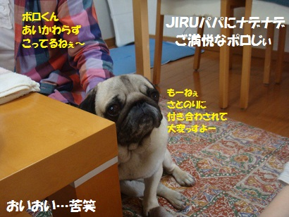 DSC04708.jpg