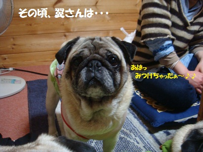 DSC04886_20111026231720.jpg