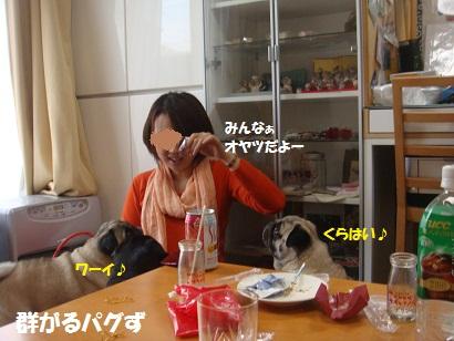 DSC06950_20111025054611.jpg
