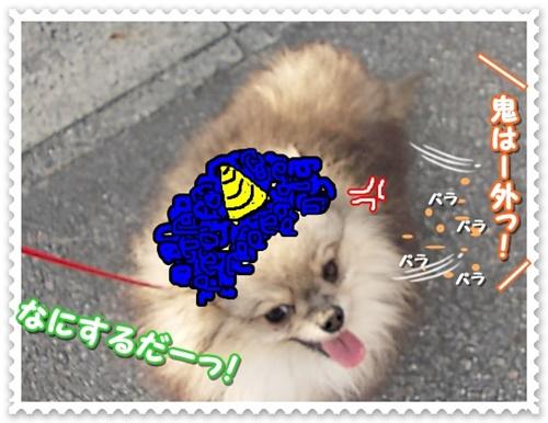 DSCN4635.jpg