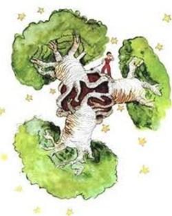baobabu02