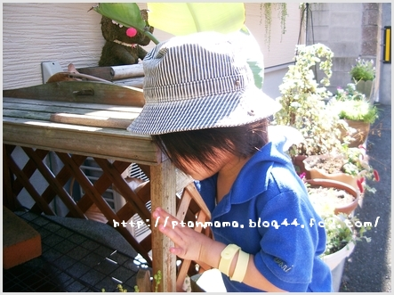 CIMG0048_20110923215914.jpg