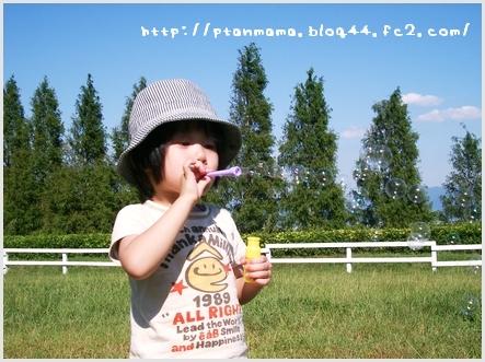 CIMG0061_20110925220635.jpg
