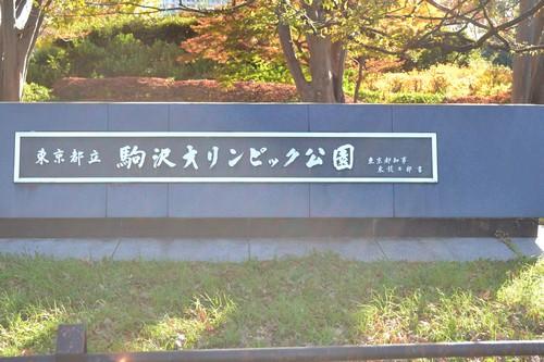 10_20111221101811.jpg