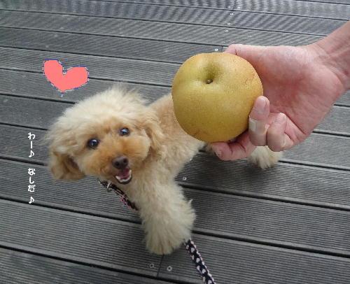 梨だ梨だ♪