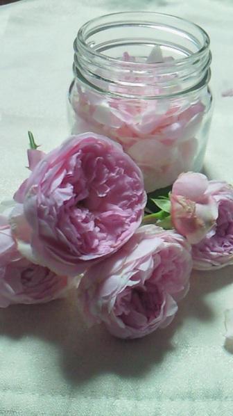 家で咲いた薔薇