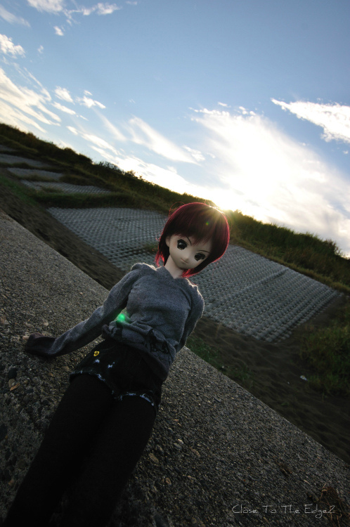 DSC_4373_178.jpg
