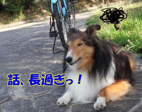 039_20130702161138.jpg