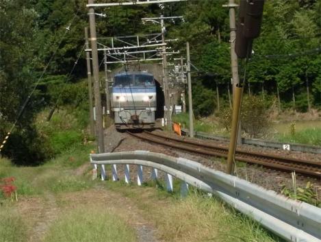 110928-bodai-29-train.jpg