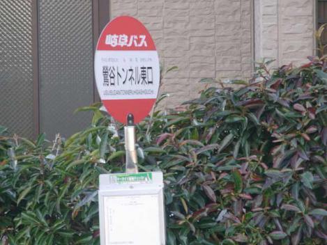 金華山-鷹巣山-3-bus
